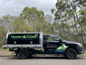 hcpest exterminators newcastle pest control