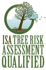 tree-risk