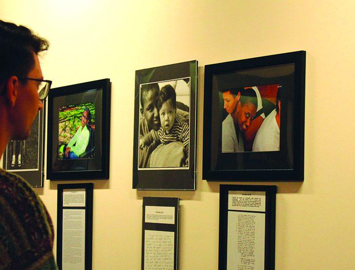 Male observing art in gallery
