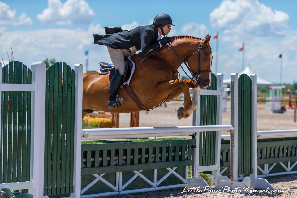 Ashley Stannard competing hunter/jumper