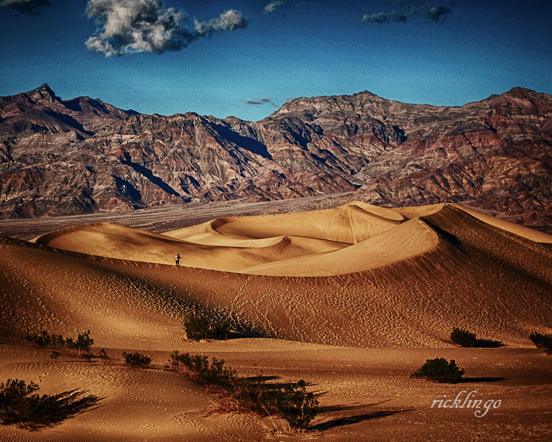 Walking the Dune