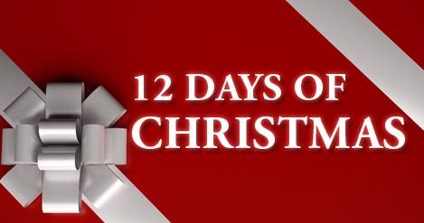 Twelve Days of Western Loudoun Christmas Picture