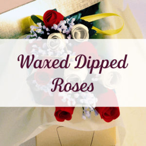 Wax Dipped Roses