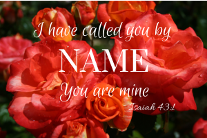 Roses with Isaiah 43:1