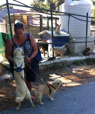 Saying goodbye to Caroline and Arris - Skiathos Dog Shelter