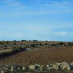 On the desert road from Marrakech to Essaouira