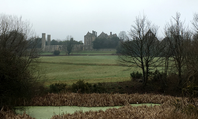 The bottom the ridge, looking towards Battle Abbey, the direction William and his Norman army would have faced.