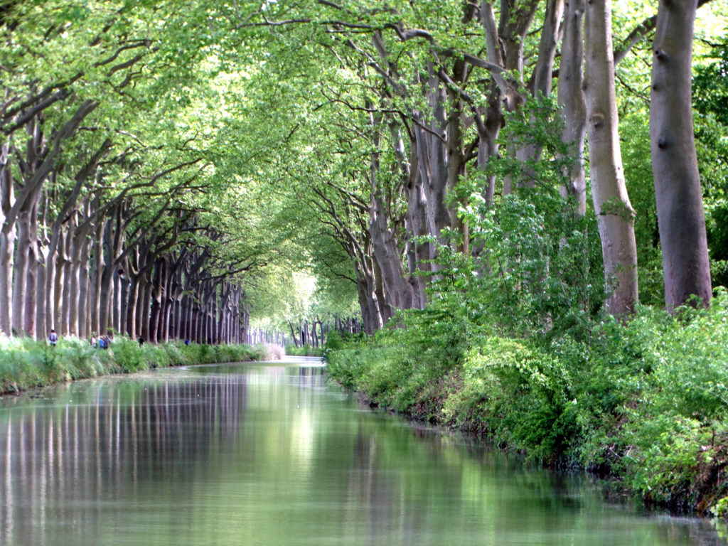 No waves on the Canal du Midi.
