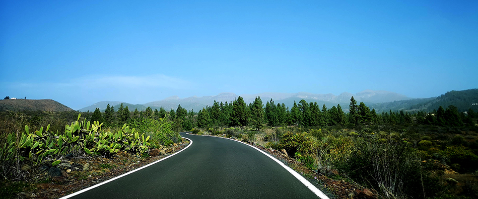 On our way to the El Tiede National Park