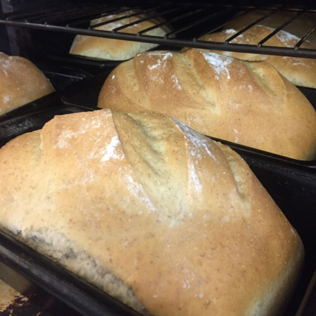 breads in oven pans