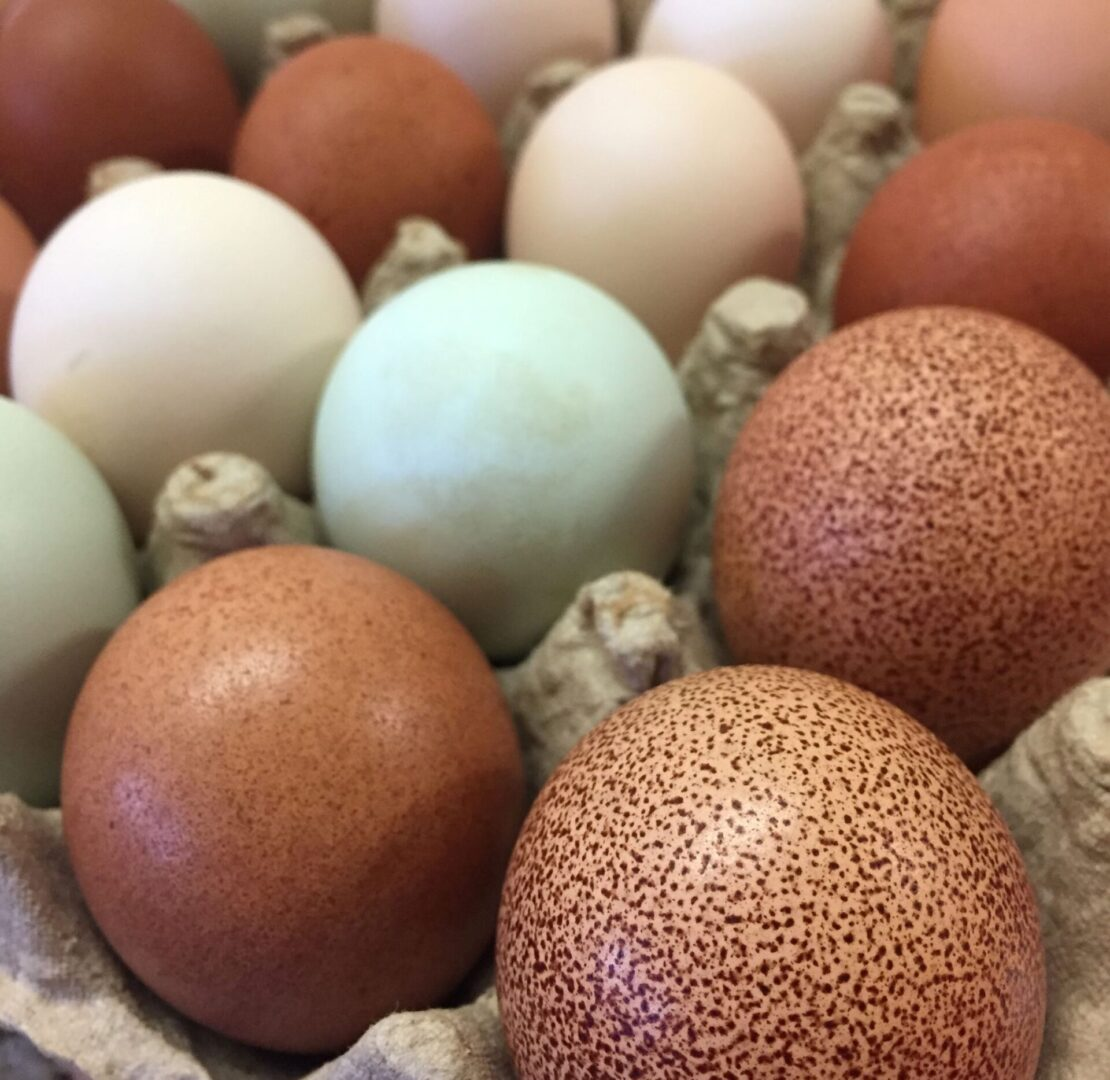 brown eggs on a tray