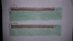 Sample layout for smaller 3 gallon size Viburnums put into a 7o linear feet space