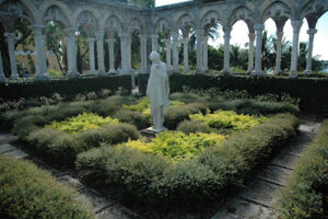 Schillings used as an edging plant in a formal garden setting around statues in the BahamasBahamas