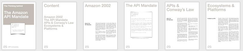 The Thinking behind the Amazon API Mandate