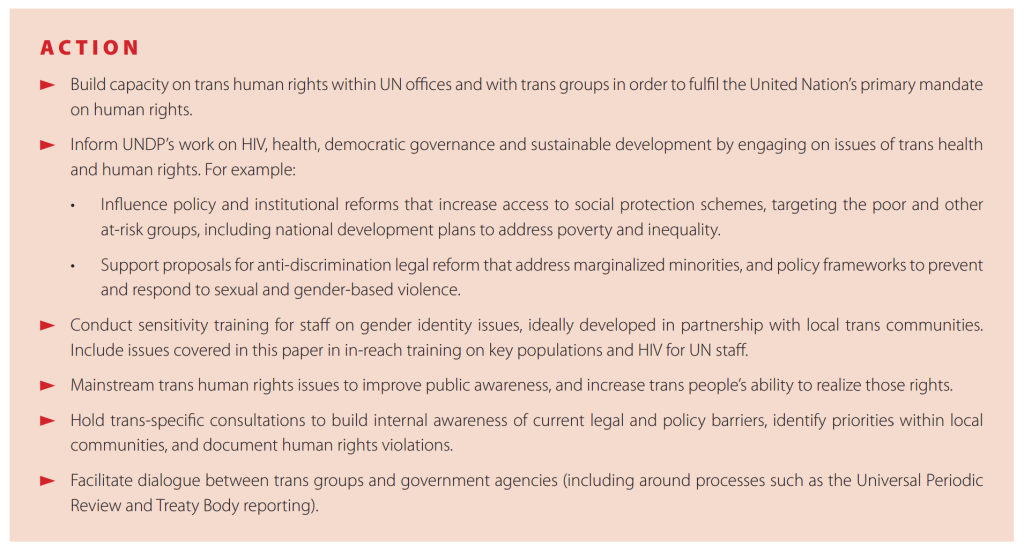 undp dec2013 trans rights recs