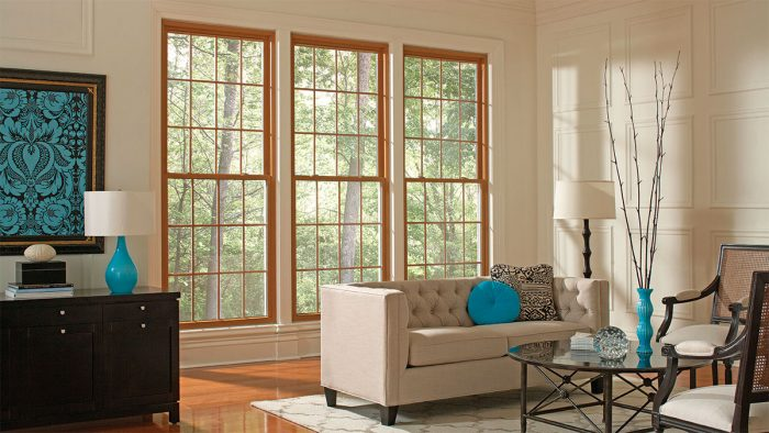 How to Choose the Right Replacement Windows