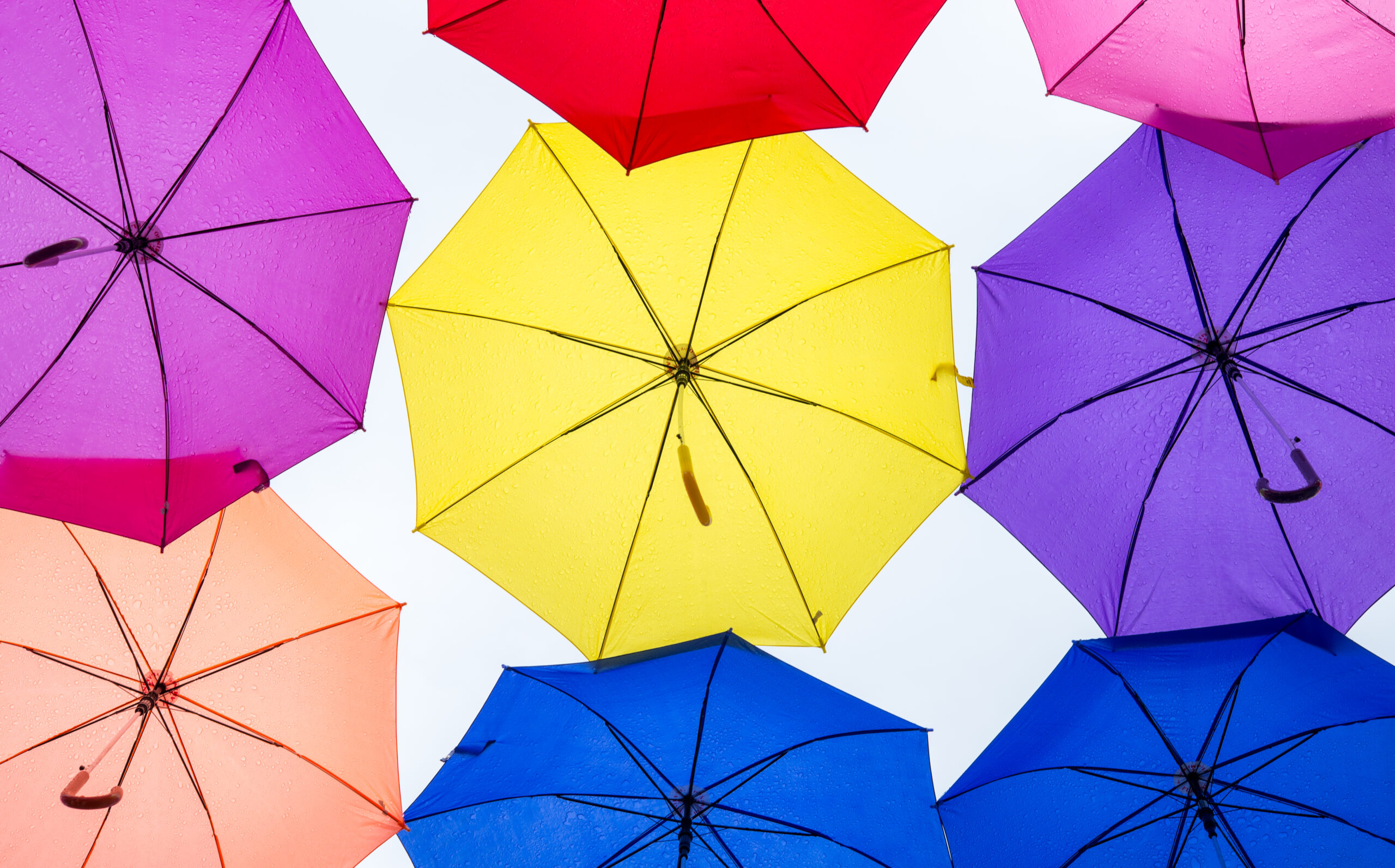 umbrella insurance Miami Florida