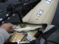Bruce with a largemouth bass