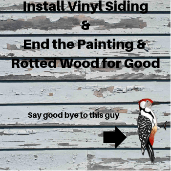 Vinyl Siding Helps Stop Woodpeckers