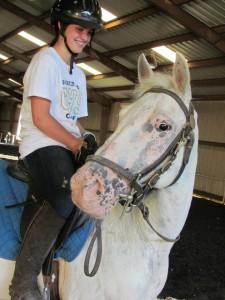 School Horse-Tomahawk