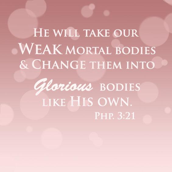 Phillipians 3:21 Workout