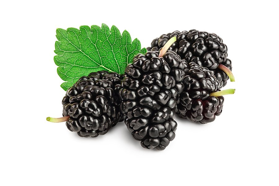 Does Mulberry Extract Brighten Your Skin?