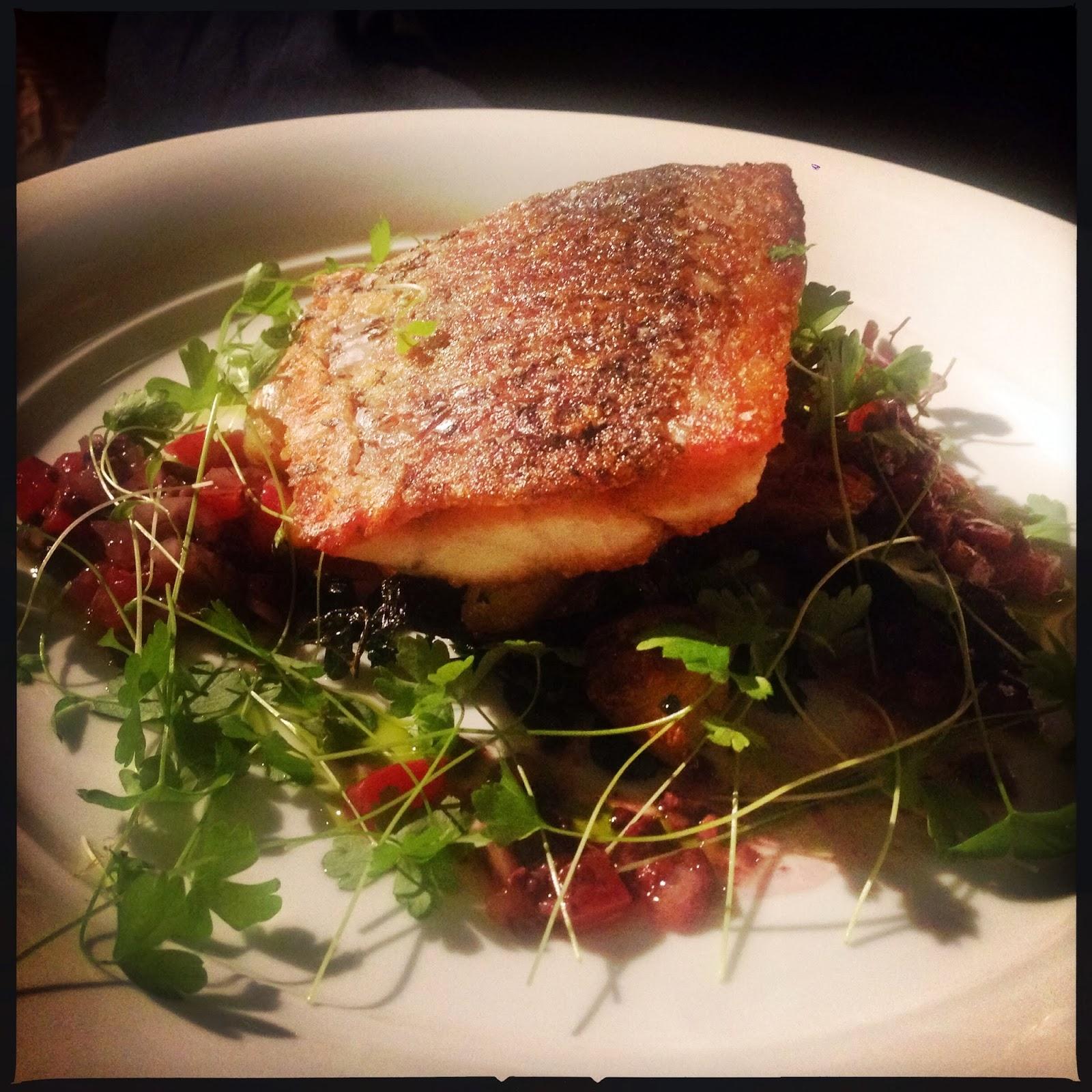 photo of fish dish
