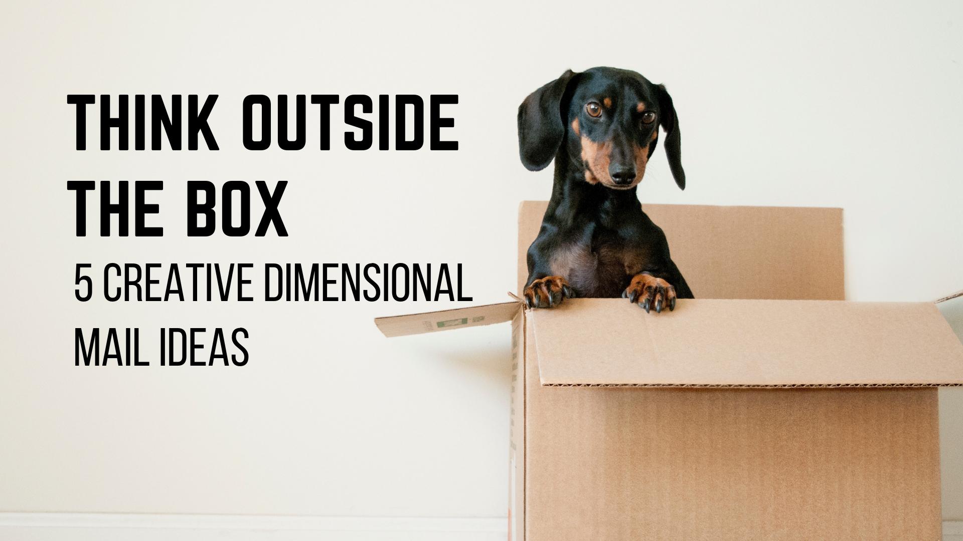 5 Creative Dimensional Mail Ideas