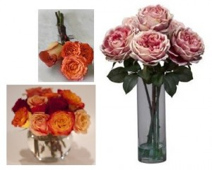 Your Rose Package