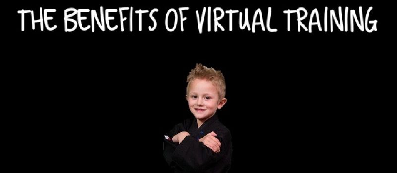 Lions Krav Maga Krav Junior The Benefits of Virtual Training