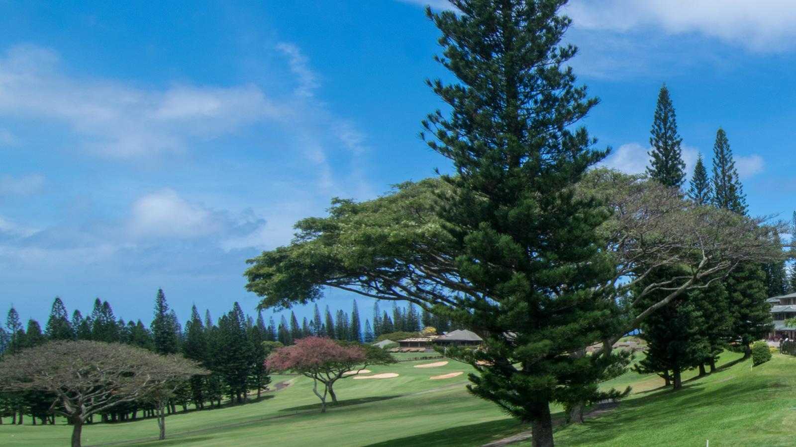 Kapalua Golf Villas 15T5-6