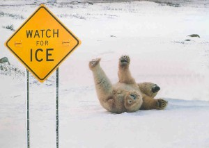 watch-for-ice