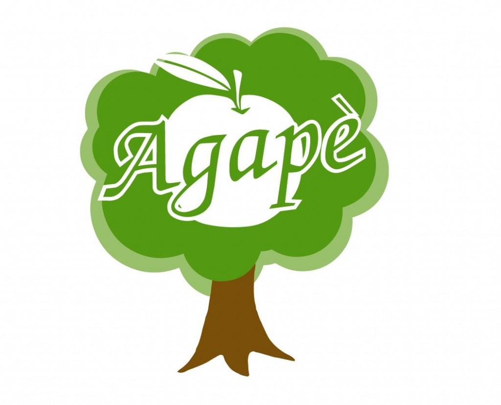 Agapè receives $4,000 for its fruit forest