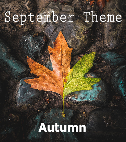 **September PRIM *Fabric-of-the-Month