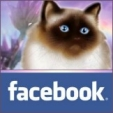 facebook-butt