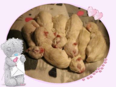 jill newborn