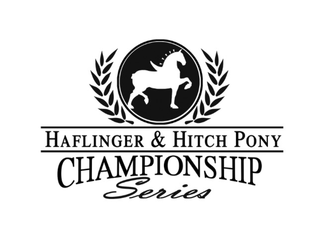 Haflinger & Hitch Pony Championship Series