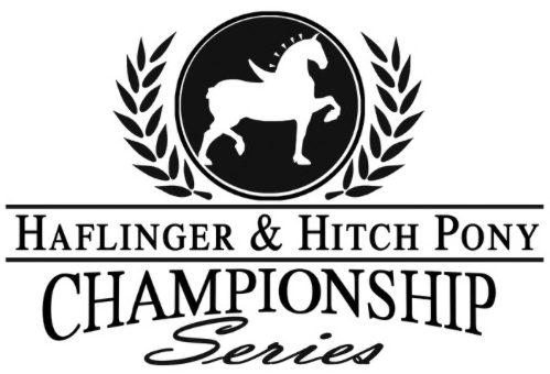 Haflinger & Hitch Pony Championship Series