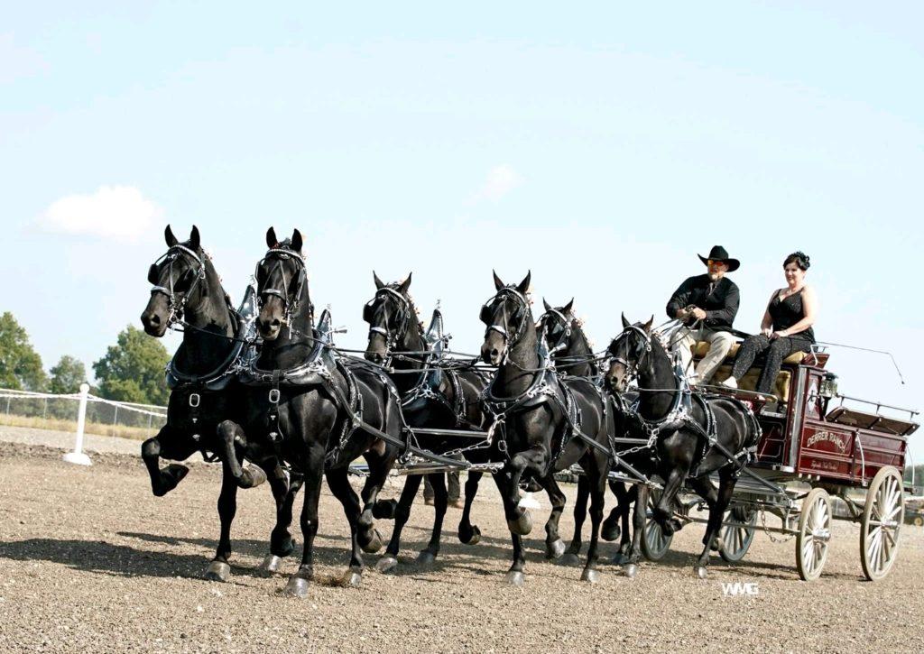 Derrer Ranch