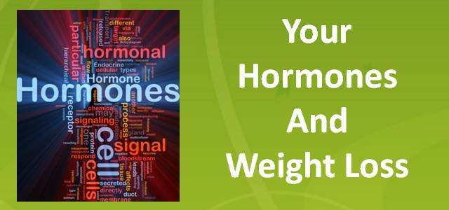 Hormones and Your Weight Loss