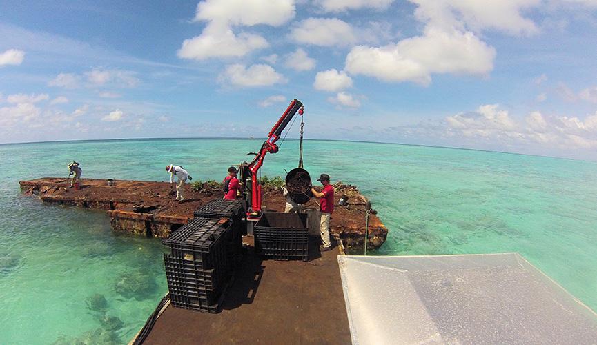 Palmyra Atoll Rust Island Clean Up