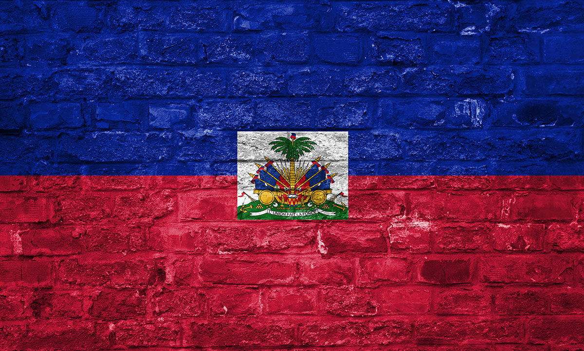 The Empowerment Network Global Haitian Flag