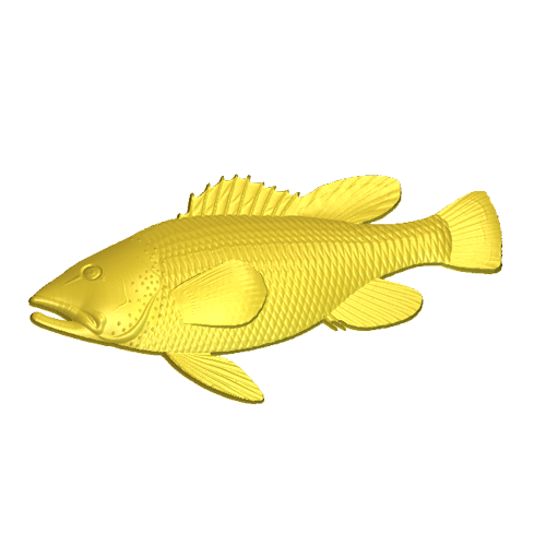 A fish model in the relief clipart library