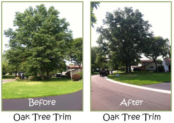 Before-After-Oak-Trim
