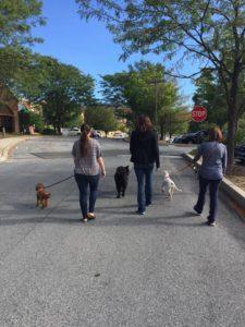 group walk run