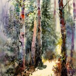 Vladimir-Zhikhartsev-LIGHT-IN-WOODS