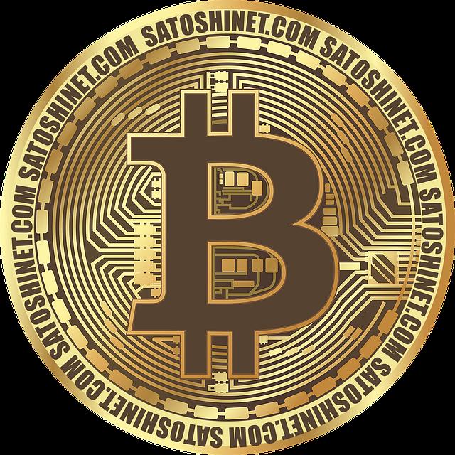 What a bitcoin looks like