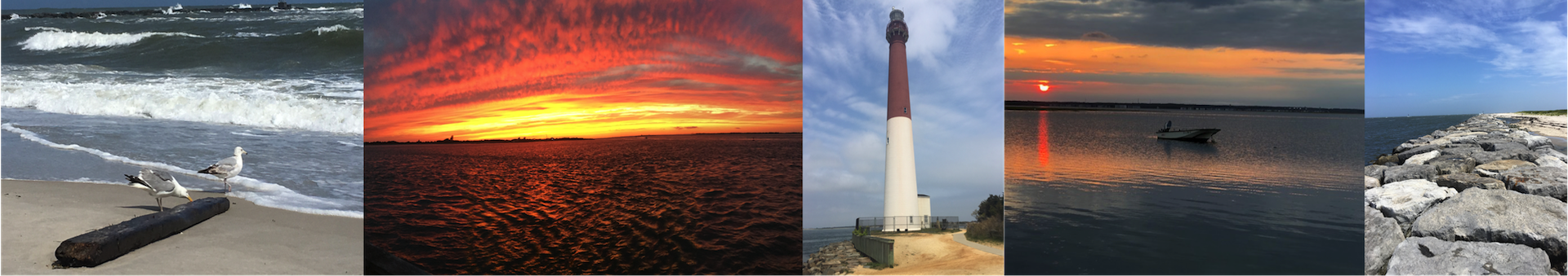Barnegat Light Taxpayers' Association