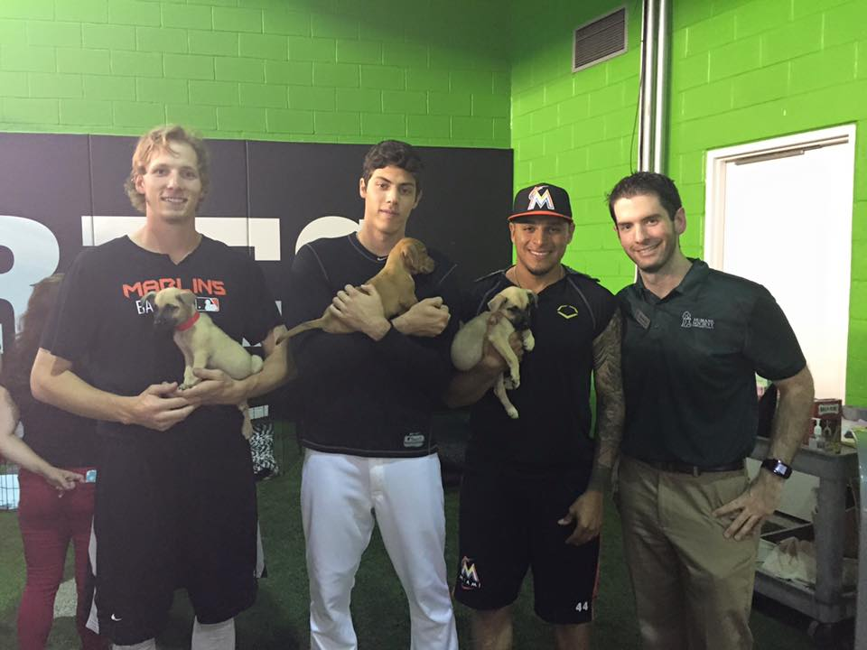 Marlins Snuggle Delivery