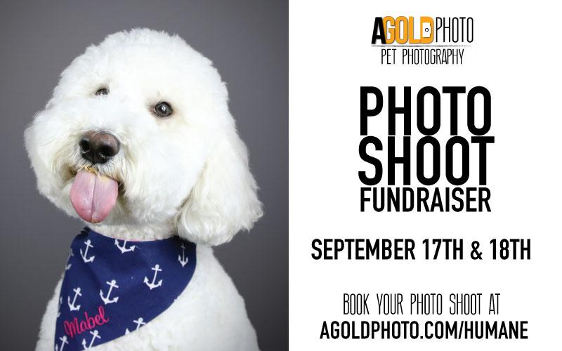Photo-Shoot-Fundraiser-Web